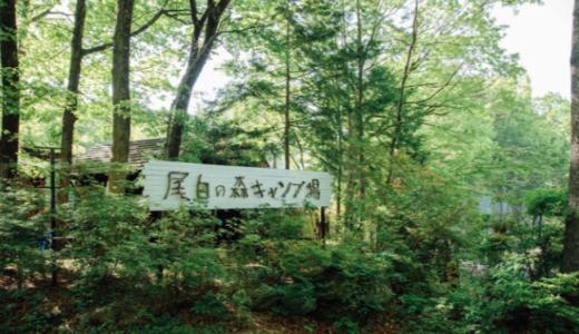 べるが尾白の森キャンプ場でファミリー限定グランピング|常設テントの利用料金やアクティビティに口コミ紹介